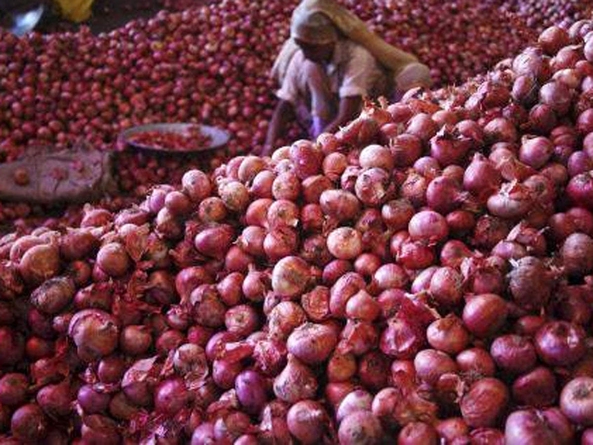 """Why onion has become the """"new gold"""" in Nigeria - Bansoro"""